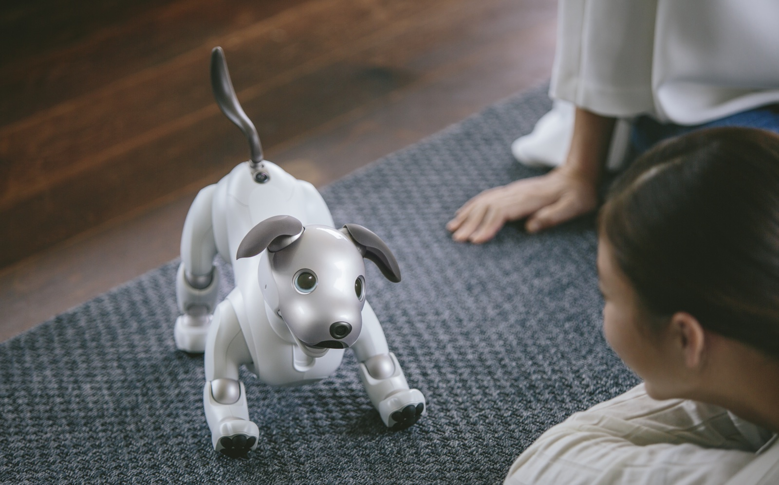 Super Smart Robot Dog from Sony Returning to the US