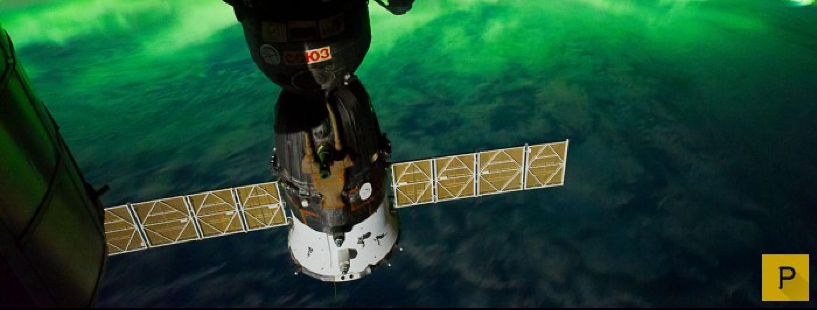 Flatworm Sent to Space Comes Back With an Extra Head
